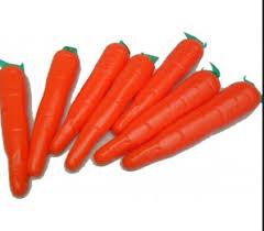 Maraca Zanahoria Grande Tl Reinaabru Una vez un hortelano plantó zanahorias. maraca zanahoria grande tl reinaabru